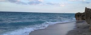 Sam's Ocean