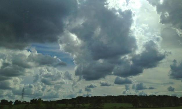 Anxiety Clouds Perception