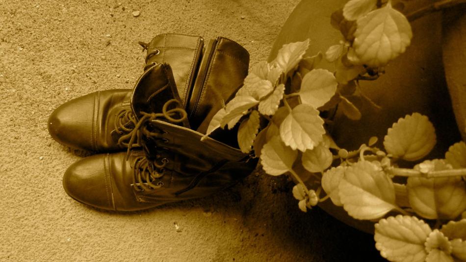 The Cobbler's Shoes